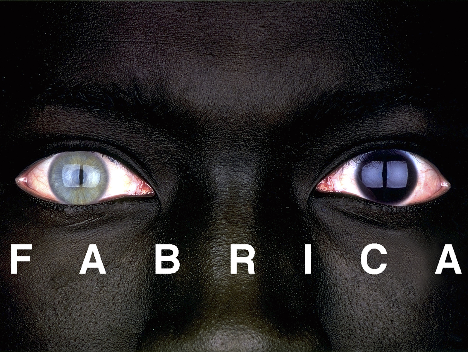 Luciano Benetton, Oliviero Toscani and Fabrica's team present Fabrica's new direction